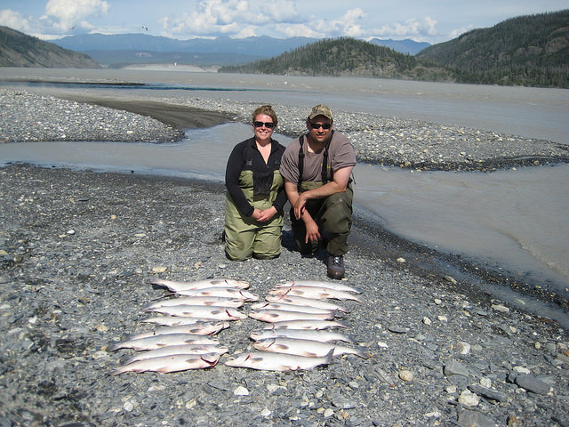 Ben and Rebecca Pazdernik kneeling behind their catch of salmon on Copper River.