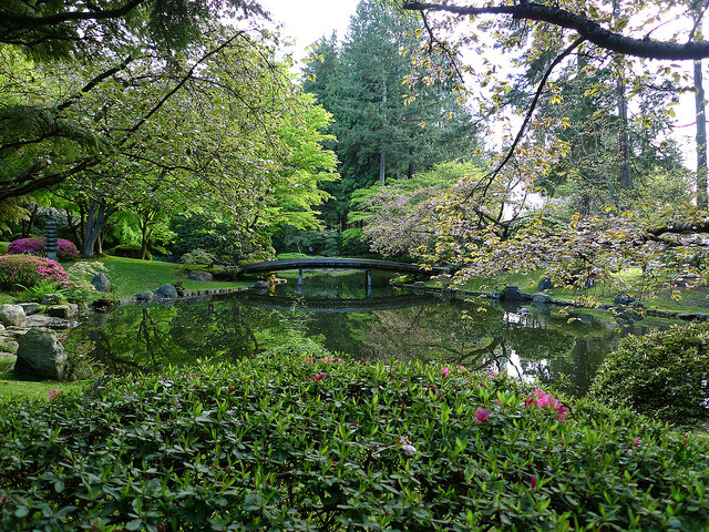 Overview of the Nitobe Garden