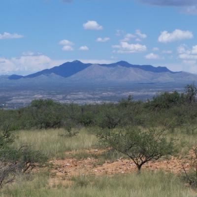Benson, Arizona, has a bounty of natural beauty.