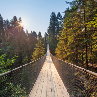 Capilano Suspension Bridge is a long suspended footbridge spanning 137 metres (450 feet) long and 70 metres (230 feet) high above the Capilano River below.