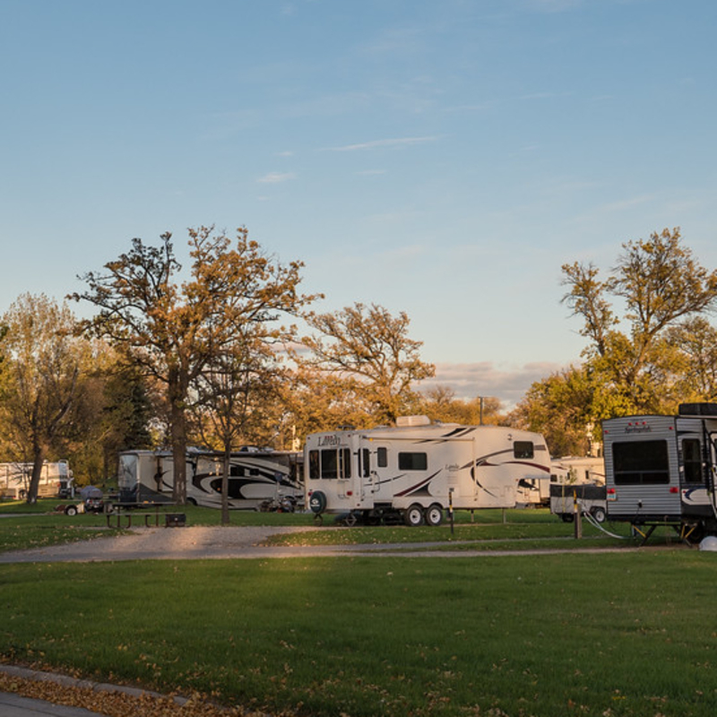 RVs lined up in a campground