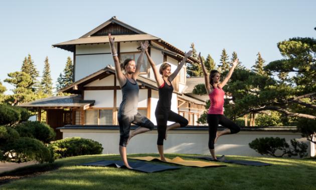 Women hold yoga poses.