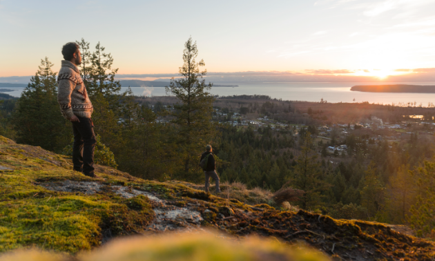 View of the Salish Sea from Scout Mountain on the Sunshine Coast Trail.