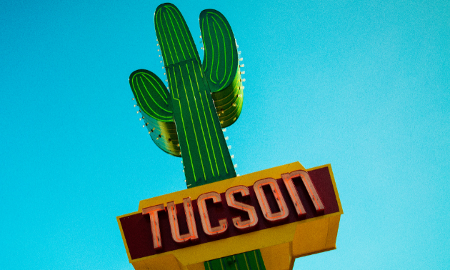 This isn't the only cactus you'll spot when you visit Tucson, Arizona.