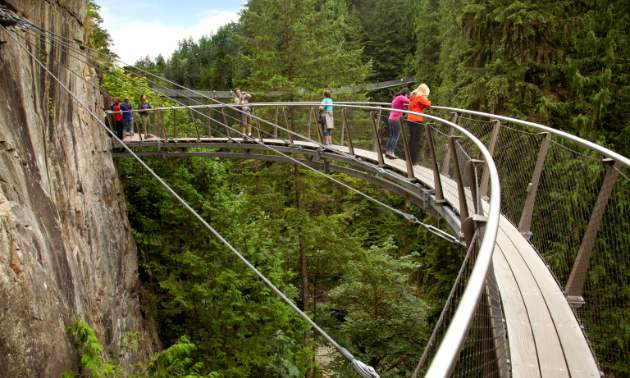 Take a tree-to-tree tour through Treetops Adventure.