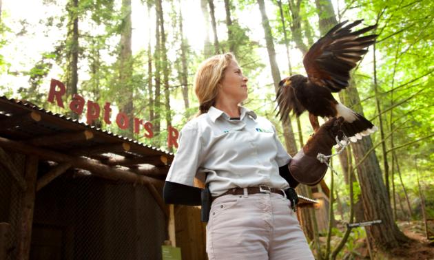 Raptors Ridge offers guests an up-close look at birds of prey.