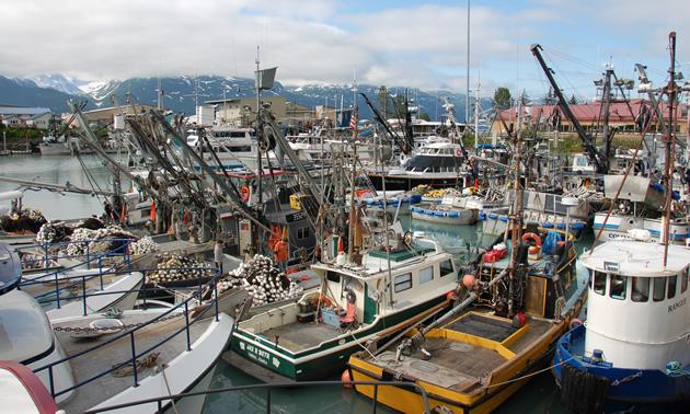 View of the marina in Valdez, Alaska.