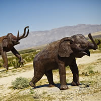 Elephants sculpted from metal in the desert near Borrego Springs, California
