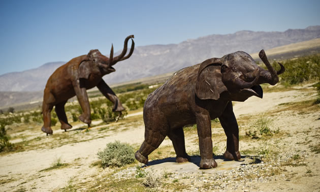 Elephants sculpted from metal in the desert near Borrego Springs, California