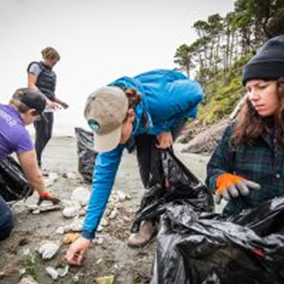 A group of volunteers cleaning up a beach.
