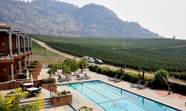Enjoy a gorgeous setting while dining at Burrowing Owl.
