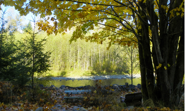 The fall colours are magnificent on the Bear Creek Trail.