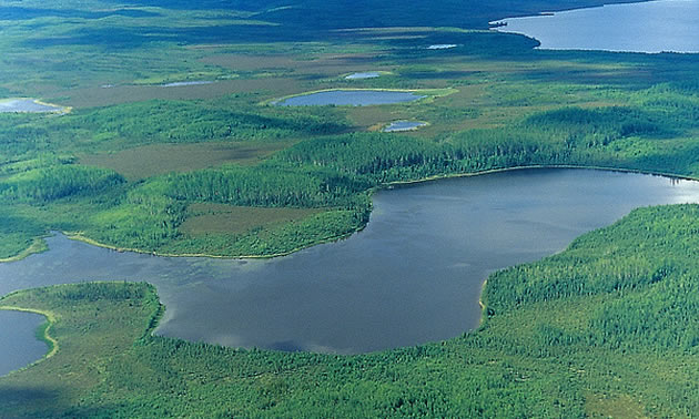 Aerial view of the Caribou Mountains.