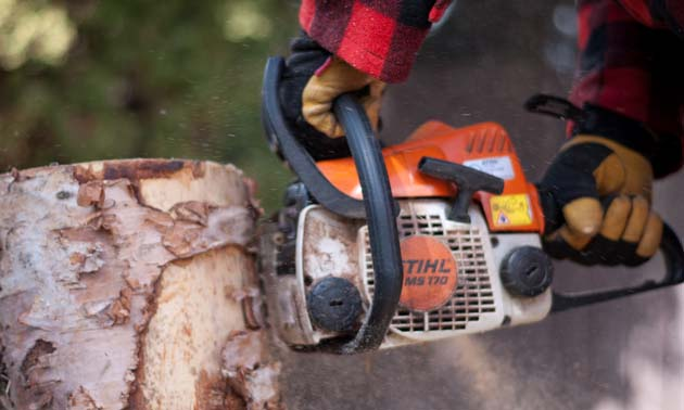 Chainsaws are designed to be efficient cutting tools, Use Caution!