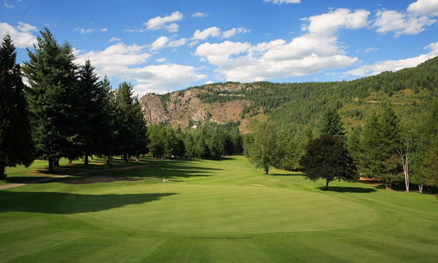 View of open golf course, trees in background.