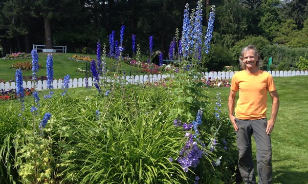 Dan Matheson, the manager, stands next to a blue delphinium  that is taller than he is.