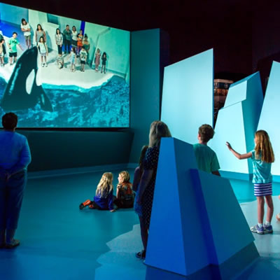 Group of kids standing on 'mock' iceberg, with AR Orca showing on big screen along with kids.