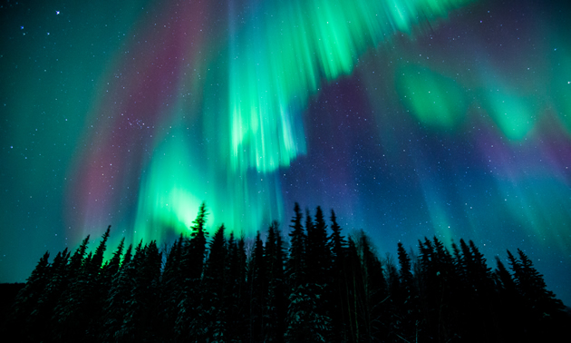 The northern lights over Fairbanks, Alaska.