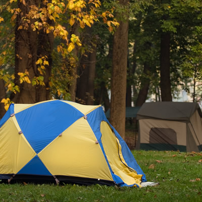 Tents set up under fall trees.