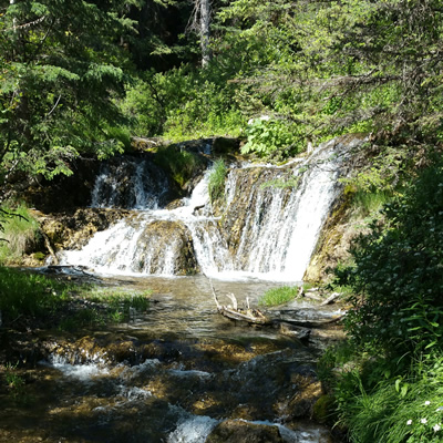 The falls at Big Hill Springs Provincial Park are spectacular.