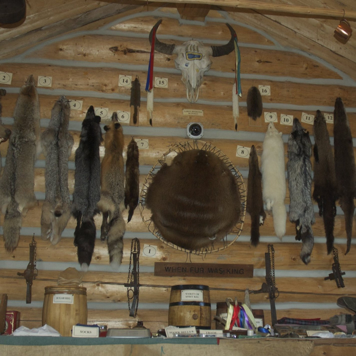 Fort Furs in Taylor BC