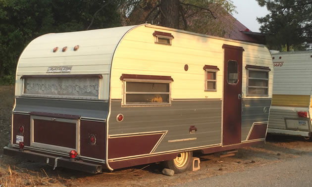 Picture of a Golden Falcon trailer on a street.