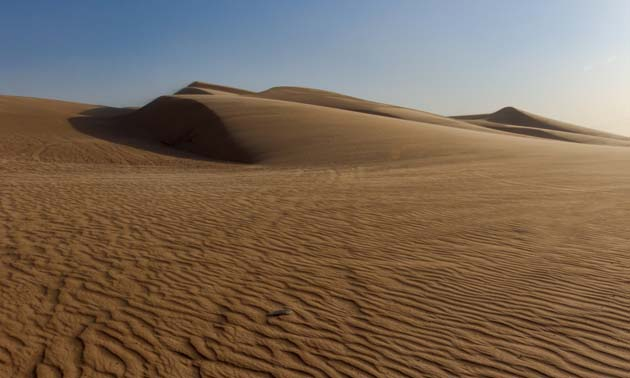 The Imperial Sand Dunes are the largest mass of sand dunes in California.