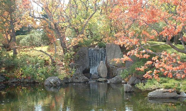 A serene pond found in Lethbridge's Nikka Yuko Japanese Garden.