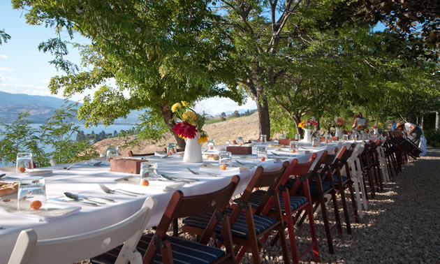 Treat yourself to at least one premium alfresco dinner a year––Joy Road Catering at God's Mountain Estate is a good place to start.