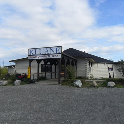 The Kluane Museum of Natural History is situated in Burwash Landing, Yukon