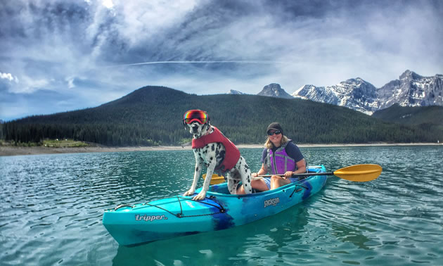 Traveler the Dalmatian is standing at the front of a kayak with Rashelle Elburg holding a paddle.