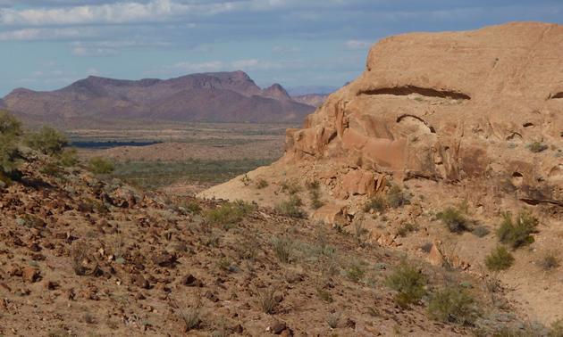 A scenic landscape in Kofa National Wildlife Refuge.
