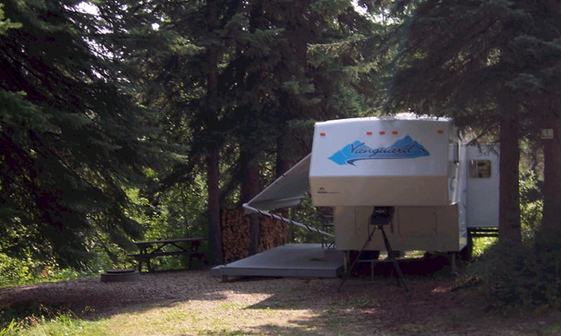 camper parked in a treed site