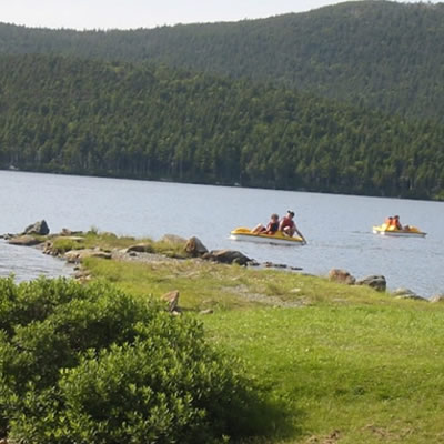 Boaters on paddle boats in water.