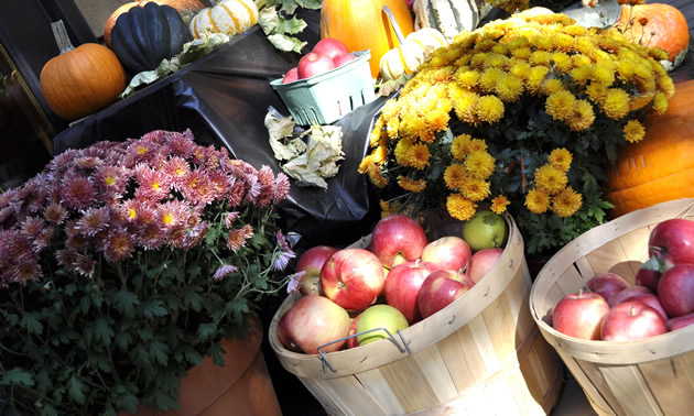 Flowers and produce on display at the Osoyoos farmers market