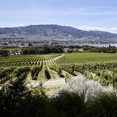 Fantastic view is a treat while having lunch in the garden at N'k Mip Cellars.