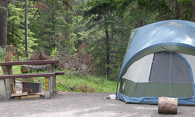 Picture of tent and picnic bench at campsite.