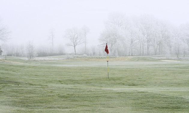 27++ Bc golf swing viral
