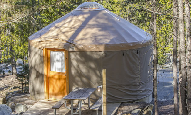 The yurts at Riverside RV Resort have roof-top skylights.