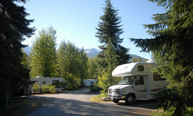 This is a view of the RV camping sites with a camper parked in one site.