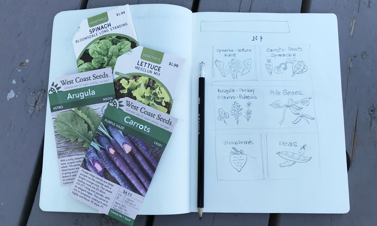 four seed packages displayed on a notebook with vegetable sketches