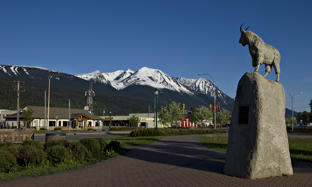 This mountain goat on a pedestal keeps watch over downtown Smithers, B.C.