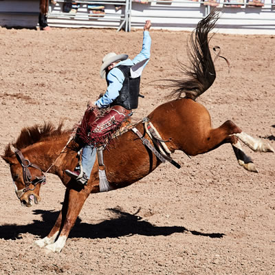 A kicking horse with a rider is part of the action at the International Rodeo in Tucson.