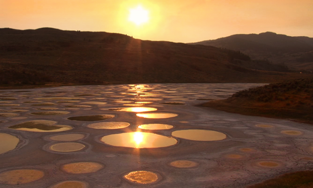 Spotted Lake Osoyoos