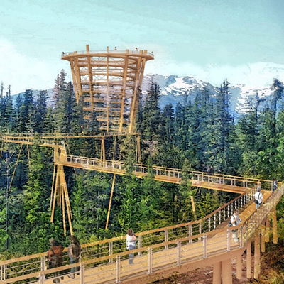 Artist's rending of the proposed elevated tree walk.