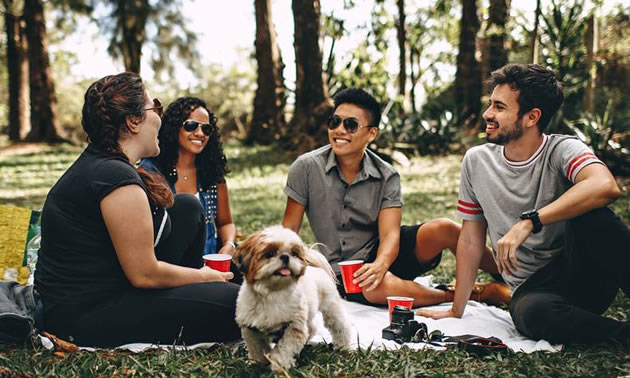 Group of people and dog sitting on grass in forest.