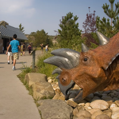 The Royal Tyrrell Museum is a world-renowned museum and research facility situated in the rugged Canadian Badlands, which offers some of the richest deposits of dinosaur fossils in the world.