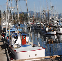 At Sooke Government Wharf on Vancouver Island fishing boats are parked alongside a dock.