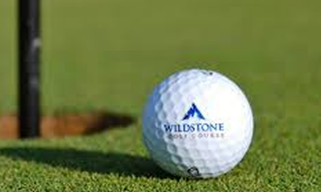 Close-up of Wildstone golf ball with logo on it.