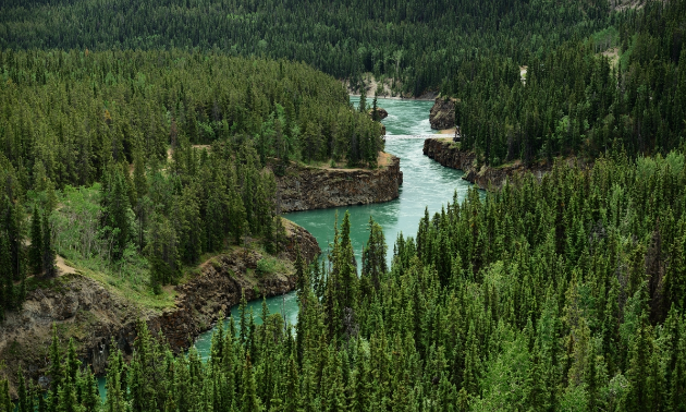 The Yukon River and Miles Canyon are seen near Whitehorse